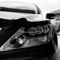 lumières dans la voiture